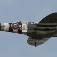 Waddington 2011